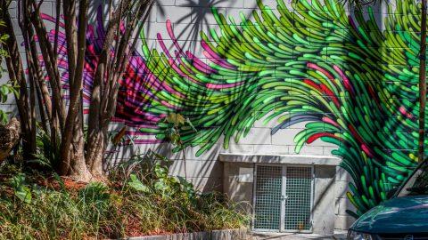 Artista plástico e grafiteiro Bieto faz pintura em muro do Geon 652, primeiro empreendimento entregue do Eixo Platina